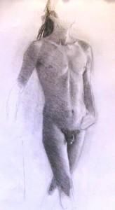 torso 8